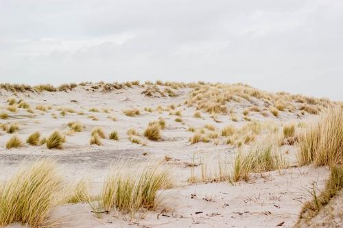 Duin trappen en zand happen