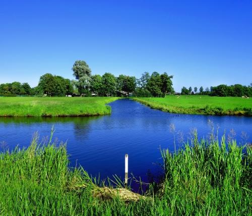Peddelen in de polder