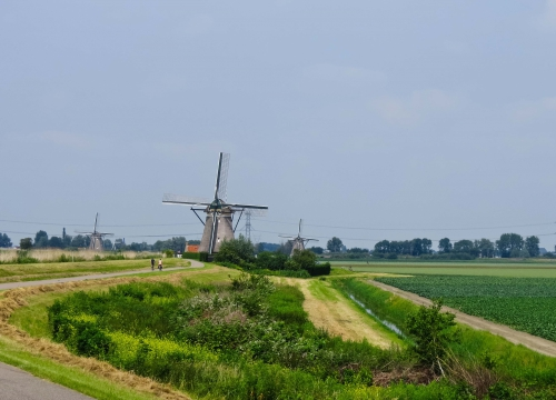 Zoetermeer, meer dan groen!