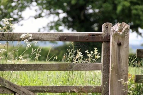 De poort naar puur natuur