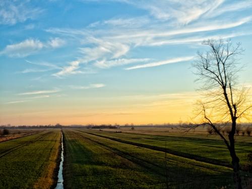 Proef de polder