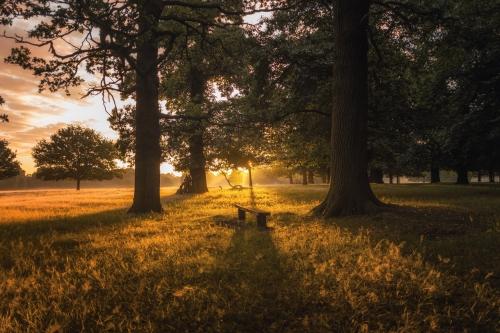 Thema Happen | Onbekommerd genieten in de Brabantse Kempen