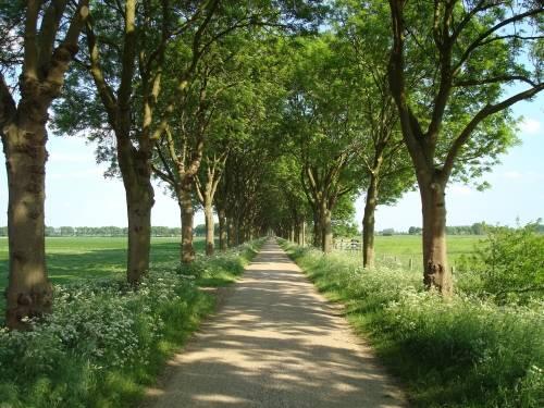 Groots genieten in het Brabantse Land