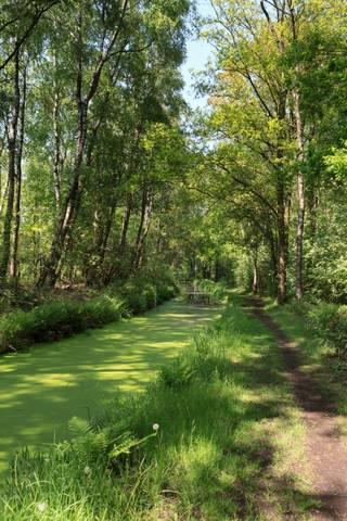 Heen en weer tussen bosrijk en dijk