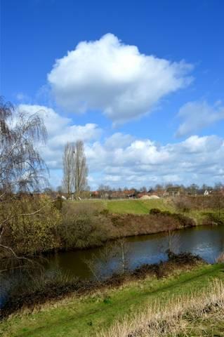 Koersen in kleurrijk Vlaanderen